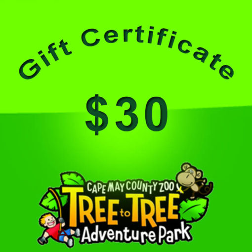 30-giftcertificate