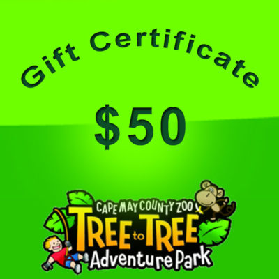 45-giftcertificate