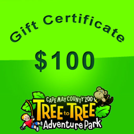 55-giftcertificate