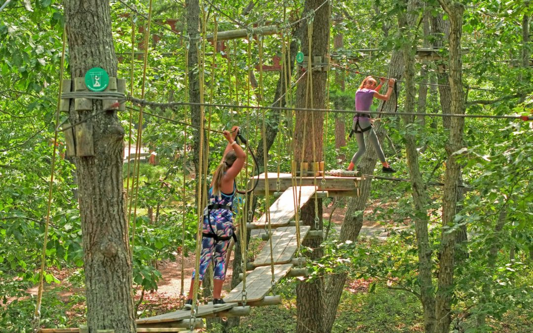 What is an aerial obstacle/aerial adventure course?