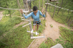 Silver Course at Tree to Tree Cape May - Adult Aerial Obstacle Course - Cape May, NJ
