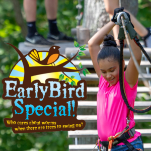 Early Bird Admission to Tree to Tree Cape May's Aerial Obstacle Courses